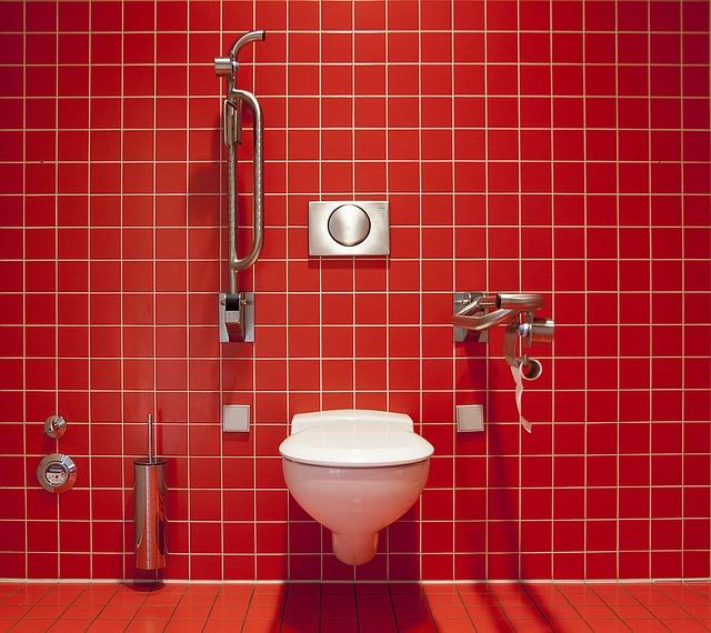 problemy toaletowe wiadomości z Holandii