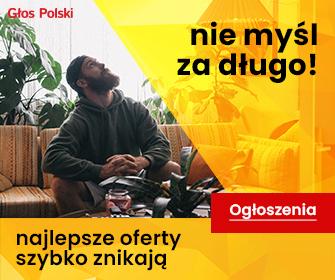 W holandii strony polskie STANTRANS