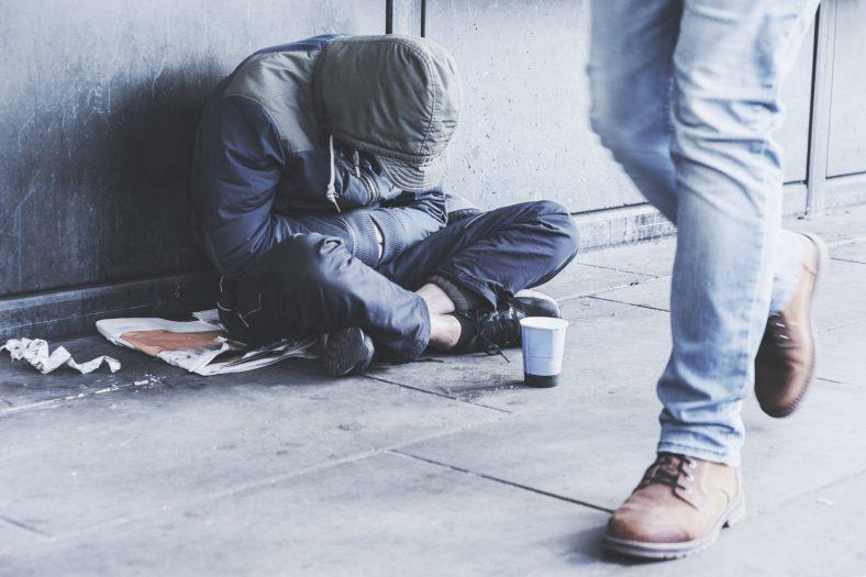 problemy z nadmierną populacją bezdomnych