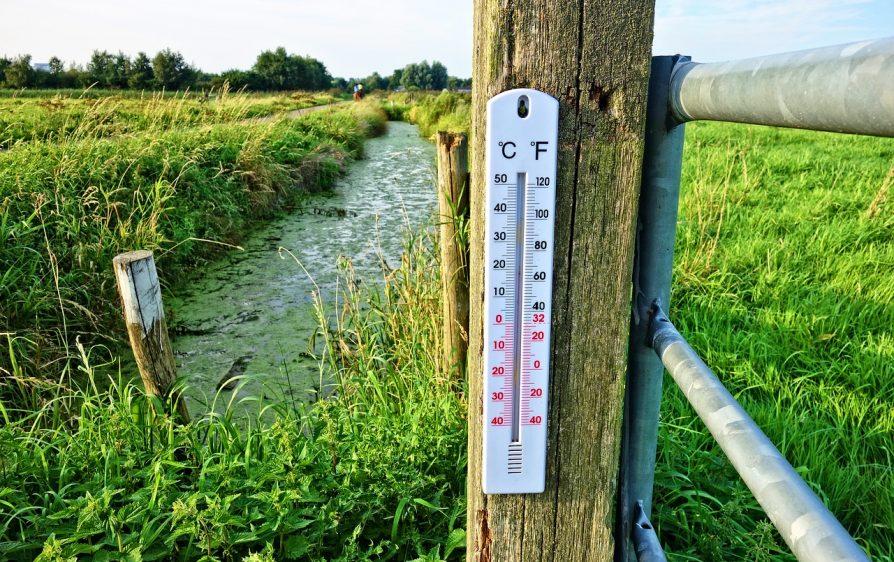 rekordowa temperatura w Holandii