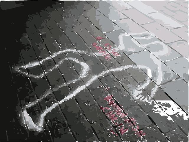 poszukiwanie sprawców zabójstwa Polaka