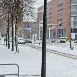 Zima NL 2011