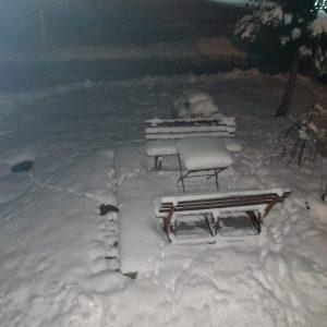 Zima Beaty