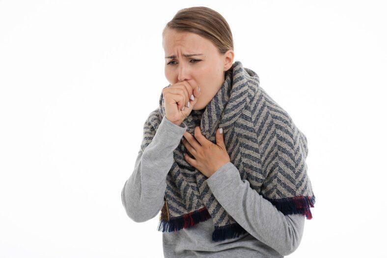 nie ma grypy w Holandii