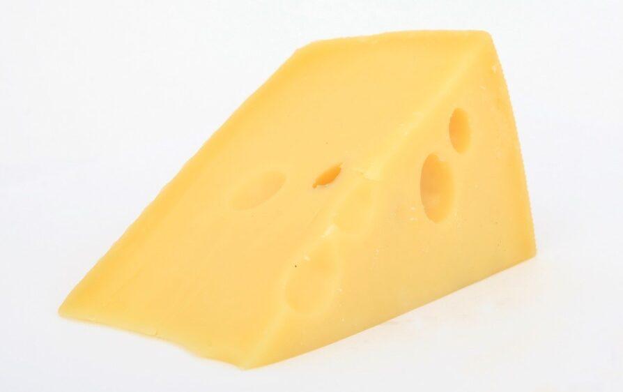 holenderskie problemy z serem