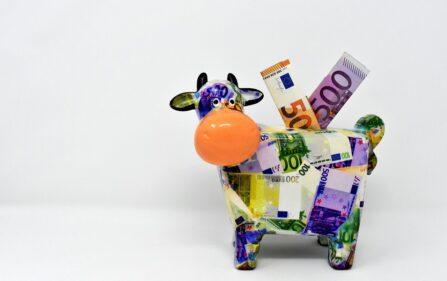 oszczędni jak Holendrzy