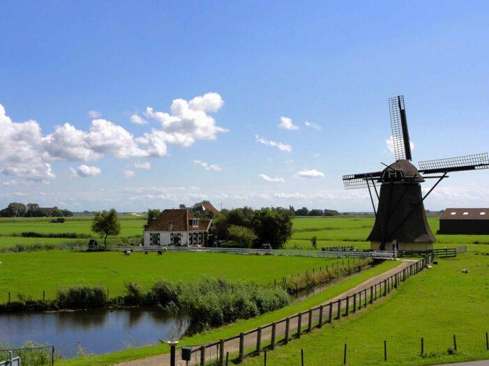 """Ogromne """"zbiory"""" na farmie w Holandii"""