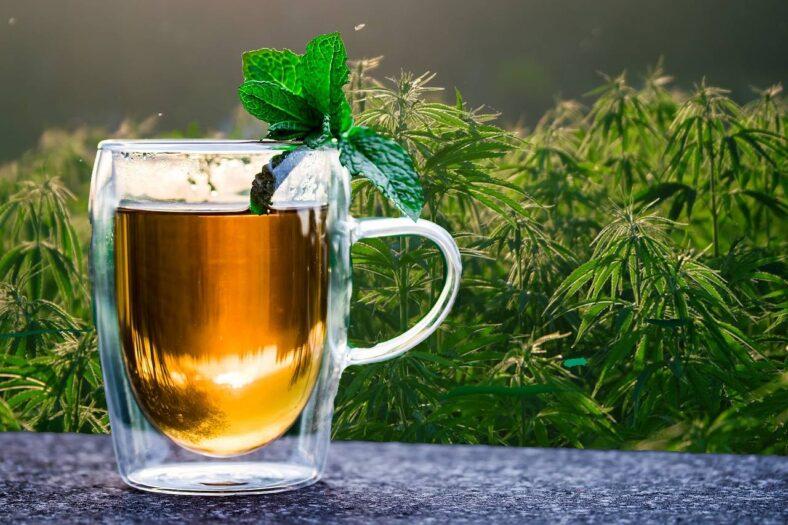 zbyt mocna ziołowa herbata z Lidla